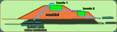 Filtre planté de roseaux - Plan2
